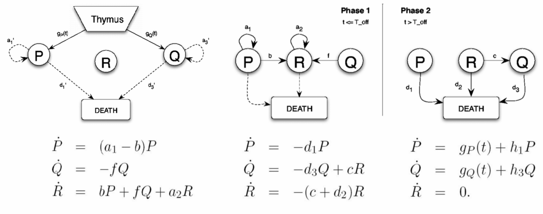 how to create mathematical models